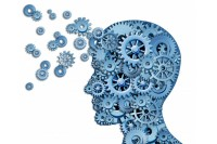 Lieknų ir apkūnių žmonių smegenys skiriasi?