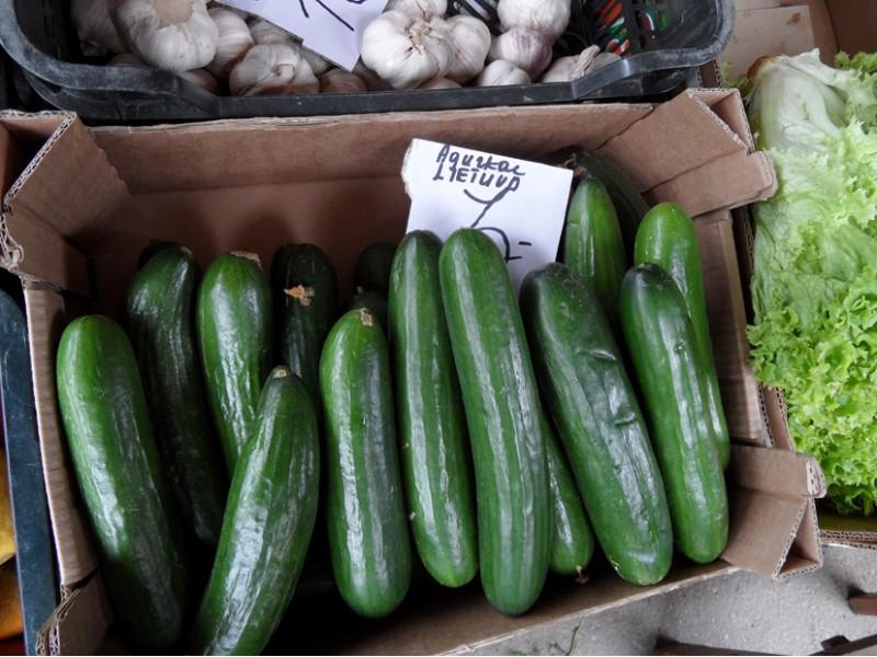 Panikos šuorus dėl ispaniškų agurkų gesina žinovai – jais Palangoje neprekiaujama