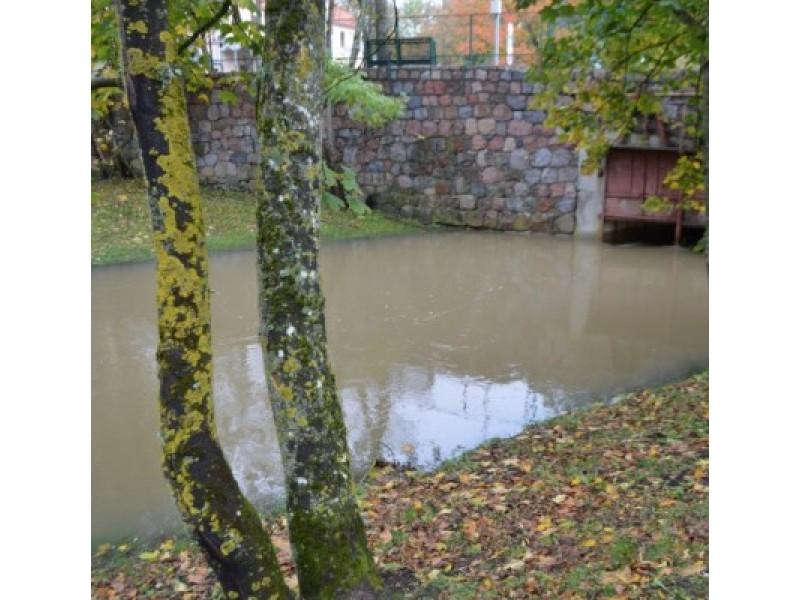 Jau rašėme, jog tai, kad vandens pernelyg daug, demonstruoja ir Ronžės upelis.