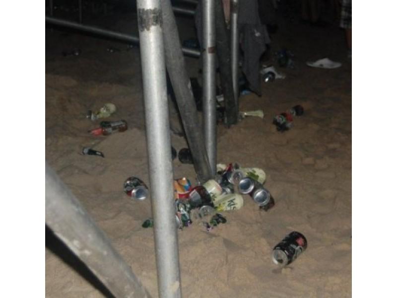 """""""Bambalinę"""" publiką 2012-ųjų naktį pakeitė kilminga"""