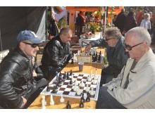 Sportiškiausias Palangos šachmatų klubo stalas.