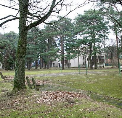 """Nugriovus senąjį """"Viešnagės"""" pastatą 1,1 ha sklype norima statyti 17 dviaukščių vilų."""