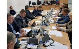 Tarybos posėdyje – apie kačiukus ir šuniukus bei kenkėjus