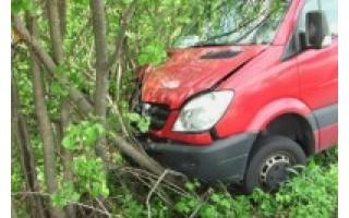 """Sušlubavus vairuotojo sveikatai į medžius rėžėsi autobusas """"Klaipėda-Palanga"""""""