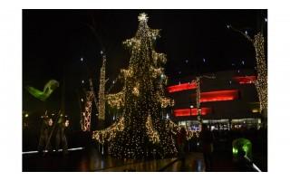 Palanga patrankos šūviais ir efektingu Kalėdinės eglės įžiebimo spektakliu visus įsuko į šventinį ratą
